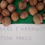 8_arra-e-kabashit-f-arres-3